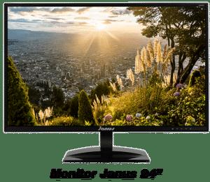 Monitor Janus IPS 24